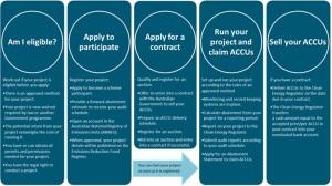 ERF participation process3