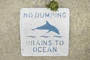 no-dumping